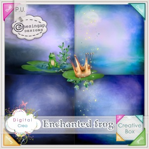 agnesingap_EnchantedFrog_papers_preview01