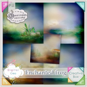 agnesingap_EnchantedFrog_papers_preview02